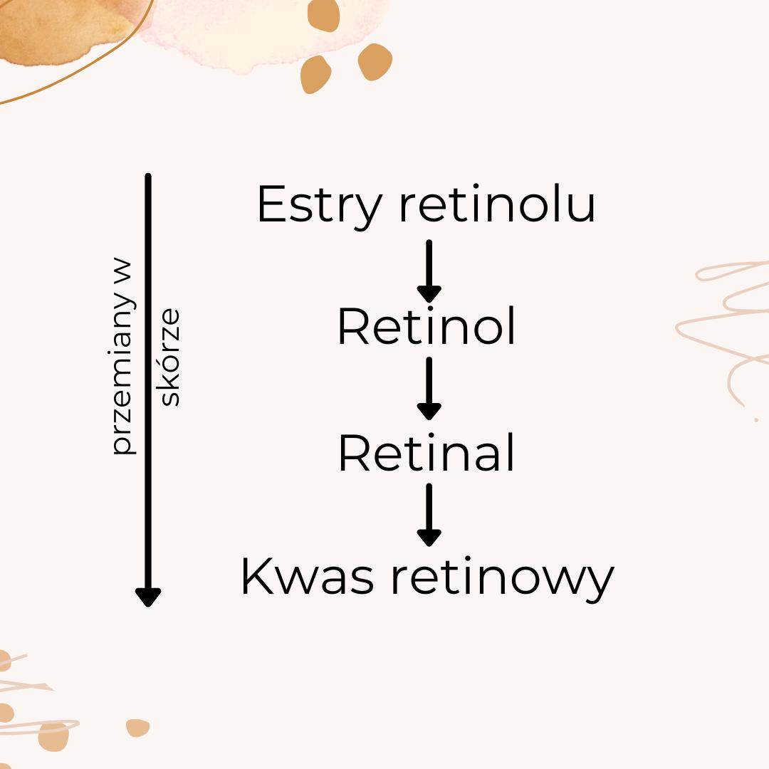 schemat_przemiany_retinoidy
